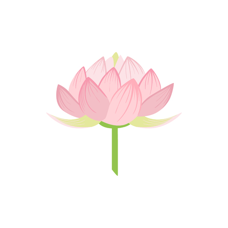 Padma Lotus Sacred Indian Flower Country Cultural Symbol Illustration. Simplified Cartoon Style Drawing Isolated On White Background Vettoriali