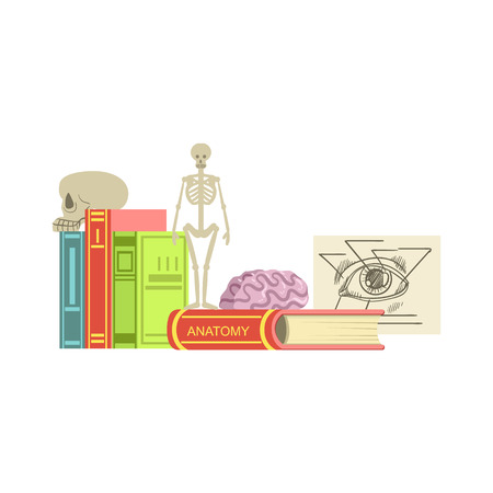 Anatomy Class Related Objects Composition, Simple Childish Flat Colorful Illustration On White Background