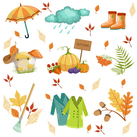 associated: Set Of Associated With Autumn Objects. Seasonal Symbols In Cute Detailed Cartoon Style On White Background.