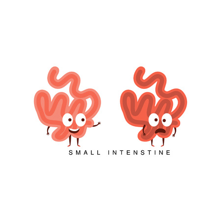 small intestine: Healthy vs Unhealthy Small Intestine Infographic Illustration.Humanized Human Organs Childish Cartoon Characters On White Background