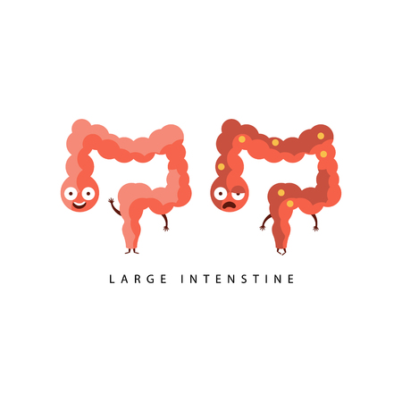 vs: Healthy vs Unhealthy Large Intestine Infographic Illustration.Humanized Human Organs Childish Cartoon Characters On White Background