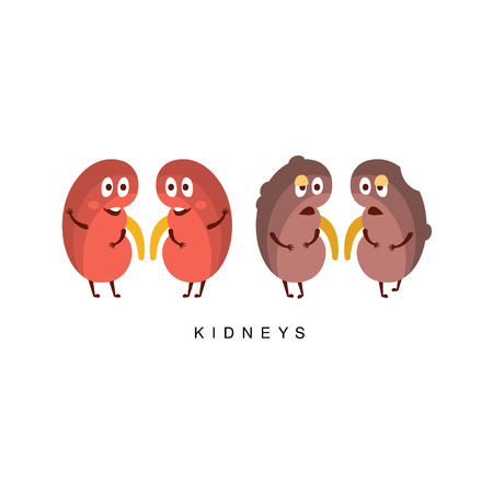 Healthy vs Unhealthy Kidneys Infographic Illustration.Humanized Human Organs Childish Cartoon Characters On White Background