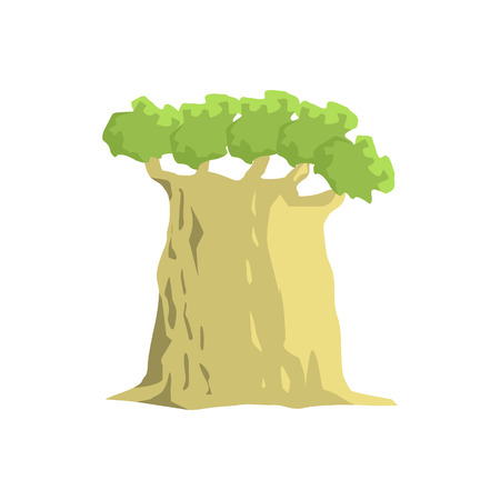 baobab tree: Wide Old Baobab Tree Jungle Landscape Element. Simple Tropical Forest Object Illustration Isolated On White Background.