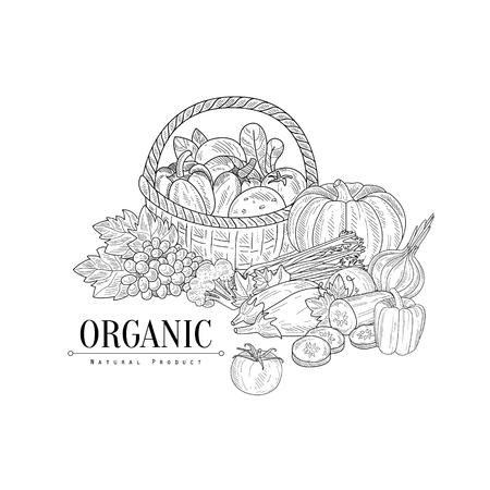 Organic Farm Products Still Main vie Drawn Sketch réaliste. Hand Drawn détaillée Illustration de contour sur fond blanc. Vecteurs