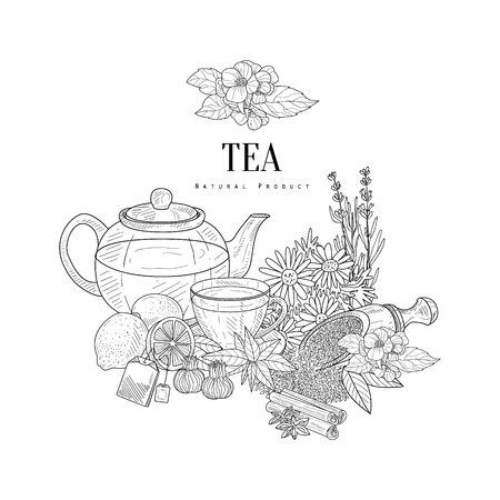 Natural Herbal Tea Ingredients Hand Drawn Realistic Sketch. Artistic Pencil Detailed Contour Illustration On White Background.