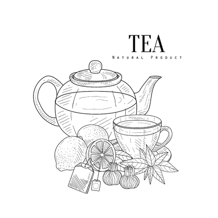 Tea And Its Components Hand Drawn Realistic Sketch. Artistic Pencil Detailed Contour Illustration On White Background.