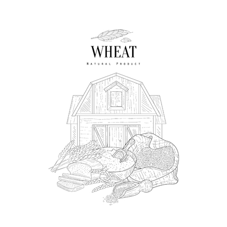 farm hand: Wheat Grain, Flour And Farm Hand Drawn Realistic Sketch. Hand Drawn Detailed Contour Illustration On White Background.
