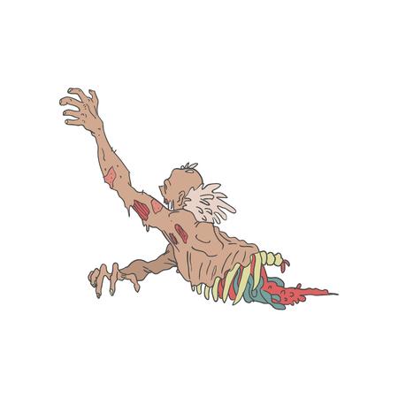 La mitad Bod espeluznante del zombi Arrastrando intestinos con Carne pútrida contorneado ilustración dibujados a mano Estilo adulto aislado sobre fondo blanco