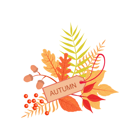 attribute: Set Of Orange Leaves With The Tag As Autumn Attribute. Seasonal Symbol In Cute Detailed Cartoon Style On White Background.