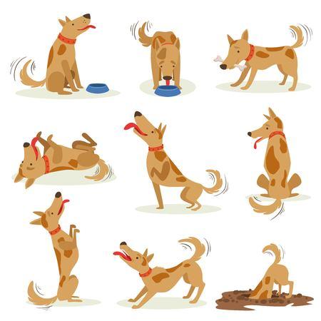通常の日常活動の茶色の犬のセットです。かわいい箱スタイルの白い背景で隔離のクラシック ペット犬動作イラストのセットです。
