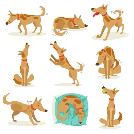 Brown Dog Set Of Normal Day-to-Day Activities. Set Of Classic Pet Dog Behavior Illustrations In Cute Carton Style Isolated On White Background. Vectores