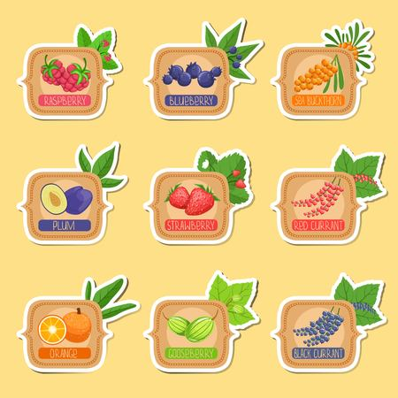 marmalade: Jam Label Sticker Collection Of Templates In Square Frames.Colorful Berry And Fruit Jar Vector Labels For Homemade Marmalade.