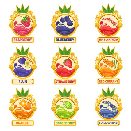 marmalade: Jam Label Sticker Collection Of Templates In Round Frames. Colorful Berry And Fruit Jar Vector Labels For Homemade Marmalade. Illustration
