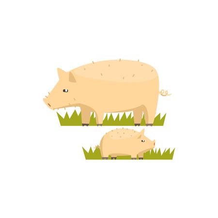 Pig Et Piglet Toy Animal Farm Mignon Sticker Bright Couleur Funky