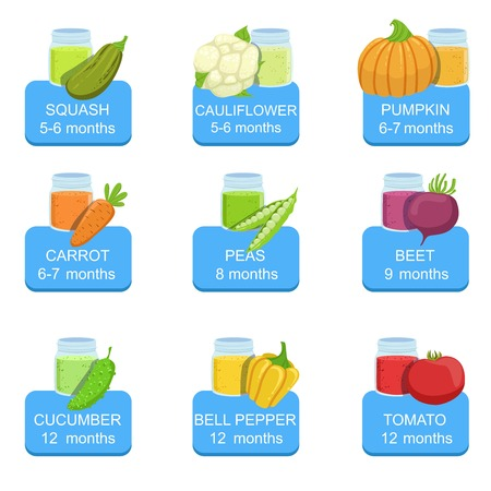 Baby Food Infographic Set Of Stickers. Bright Color Infant Diet Elements Informational Illustrations. Flat Colorful Vector Icons On White Background.