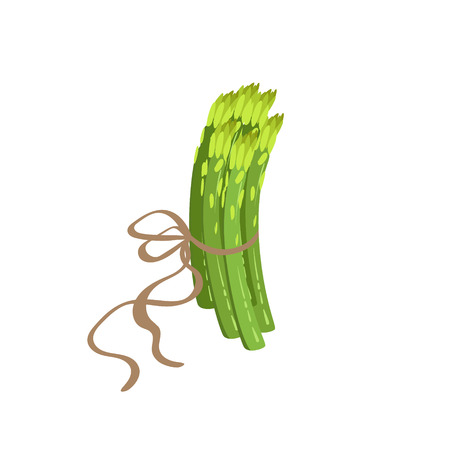 organisms: Asparagus Product Rich In Folic Acid. Simple Colorful Flat Illustration On White Background. Stock Photo