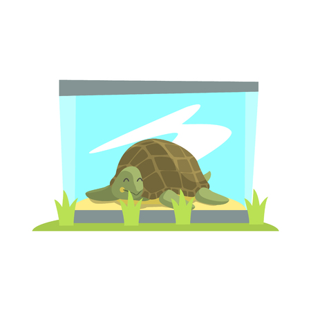 terrarium: Big Green Turtle Laying Inside Glass Terrarium In Zoo. Wild Animal Enclosed In Outdoor Zoological Park Funky Style Illustration On White Background.