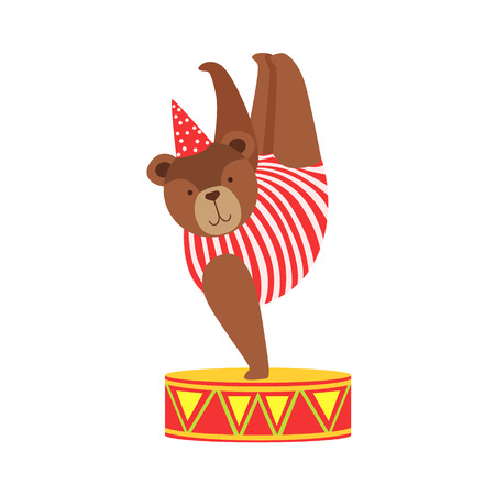 Circus Bear Animal Artist In Stripy Body Suit Performing Acrobatic One Hand Stand Stunt For The Circus Show.
