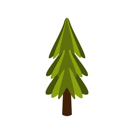 Standalone Fir Tree, Camping And Hiking Outdoor Tourism Related Item Isolated Vector Illustration. Part Of Forest Touristic Adventures Objects Collection In Cute Flat Design. Illustration