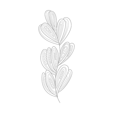Seagrass Sea Underwater Nature Adult Black And White Coloring Book Illustration Illustration