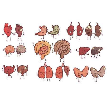 heath: Human Internal Organs Healthy Vs Unhealthy Set Of Medical Anatomic Funny Outlined Comic Character Pairs Of Organism Parts In Comparison Happy Against Sick And Damaged.