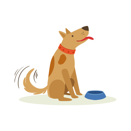 begging: Brown Pet Dog Waiting To Be Fed With Dog Food, Animal Emotion Cartoon Illustration. Cute Realistic Active Hound Vector Character Everyday Life Scene Emoji.