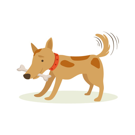 Brown Pet Dog Carrying Bone In Teeth, Animal Emotion Cartoon Illustration. Cute Realistic Active Hound Vector Character Everyday Life Scene Emoji. Illustration