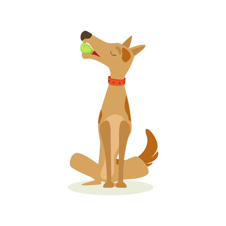 pointy ears: Brown Pet Dog Sitting With Gulf Ball In Mouth, Animal Emotion Cartoon Illustration. Cute Realistic Active Hound Vector Character Everyday Life Scene Emoji. Illustration