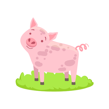 associated: Pig Farm Animal Cartoon Farm Related Element On Patch Of Green Grass. Colorful Vector Illustration With Farming And Rancho Associated Isolated Object.