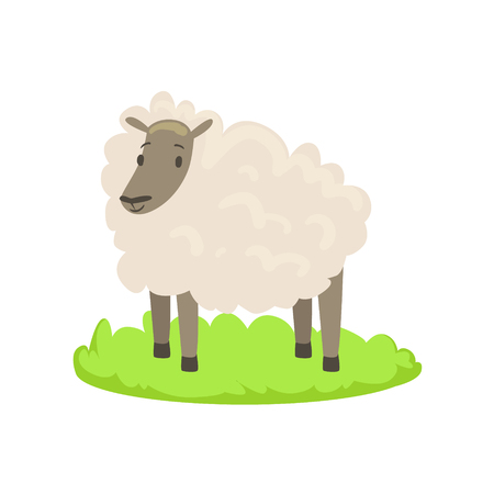 Sheep Farm Animal Cartoon Farm Related Element On Patch Of Green Grass. Colorful Vector Illustration With Farming And Rancho Associated Isolated Object.