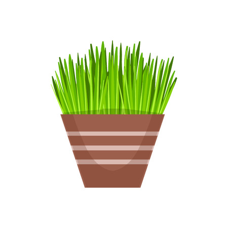 vegetation: Home Grass Vegetation In The Flowerpot, Flower Shop Decorative Plants Assortment Item Cartoon Vector Illustration. Natural Floral Composition From Florist Store Isolated Item.