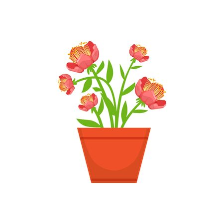 bushy: Home Bushy Red Flower In The Flowerpot, Flower Shop Decorative Plants Assortment Item Cartoon Vector Illustration. Natural Floral Composition From Florist Store Isolated Item.