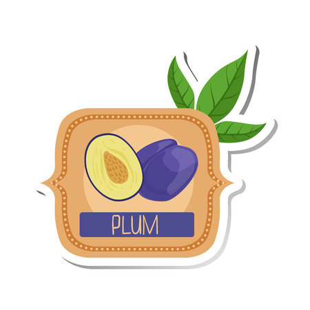 signed: Plum Bright Color Jam Label Sticker Template In Square FrameHomemade Garden Fruit Sweet Marmalade Vector Isolated Illustration.