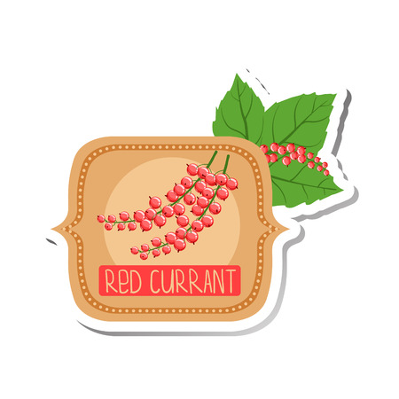 signed: Red Currant Bright Color Jam Label Sticker Template In Square FrameHomemade Garden Fruit Sweet Marmalade Vector Isolated Illustration. Illustration