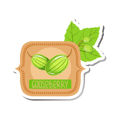 marmalade: Gooseberry Bright Color Jam Label Sticker Template In Square FrameHomemade Garden Fruit Sweet Marmalade Vector Isolated Illustration.