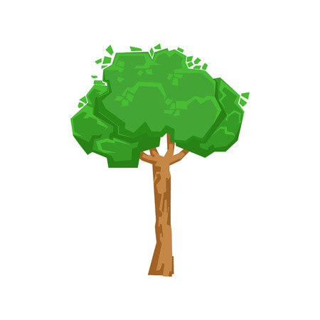 broadleaved tree: Tall Green Lime Tree Natural Landscape Design Element, Part Of Scenery In Nature Landscaping Constructor. Detailed Cartoon Vector Objects For Land Surface Constructing.