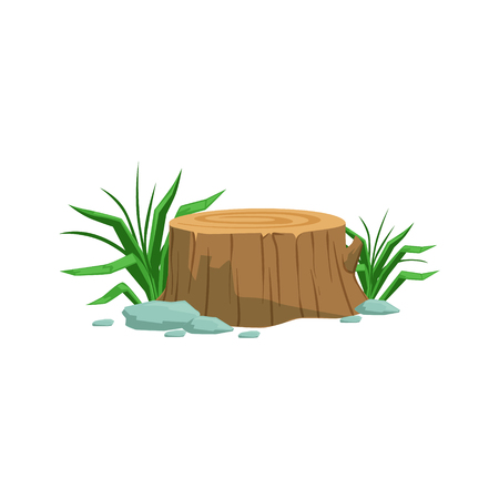 freshly: Freshly Cyt Stump Natural Landscape Design Element, Part Of Scenery In Nature Landscaping Constructor. Detailed Cartoon Vector Objects For Land Surface Constructing.