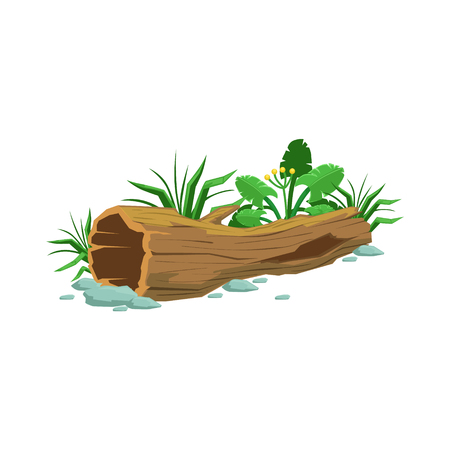 Decaying Wood Hollowed Log In Swamp Natural Landscape Design Element, Part Of Scenery In Nature Landscaping Constructor. Detailed Cartoon Vector Objects For Land Surface Constructing. Illustration