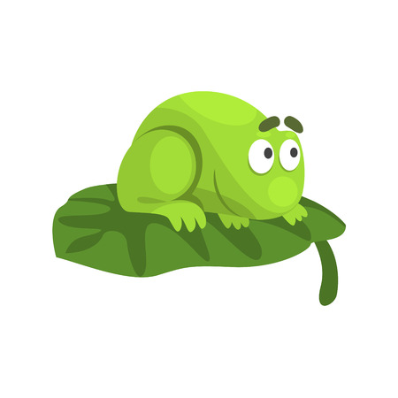 Shy Green Frog Funny Character Sitting On The Leaf Childish Cartoon Illustration