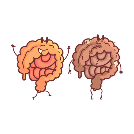 heath: Large Intestine Human Internal Organ Healthy Vs Unhealthy, Medical Anatomic Funny Cartoon Character Pair In Comparison Happy Against Sick And Damaged