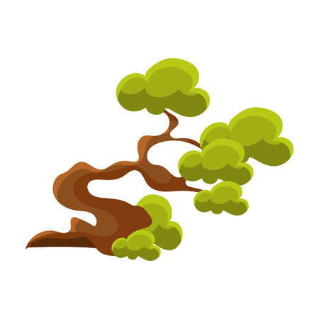 Green Crooked Tree Bonsai Miniature Traditional Japanese Garden Landscape Element Vector Illustration Illustration