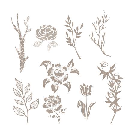 Hand Drawn Plant Monochrome Set
