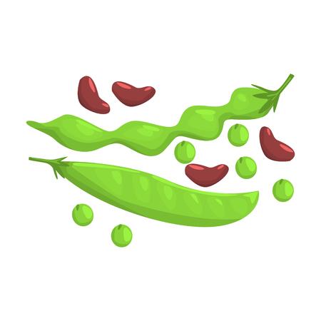 Vainas de judías verdes y guisantes, artículo de alimentos ricos en proteínas, elemento importante de la ilustración de Vector de dieta equilibrada saludable Foto de archivo - 74163634