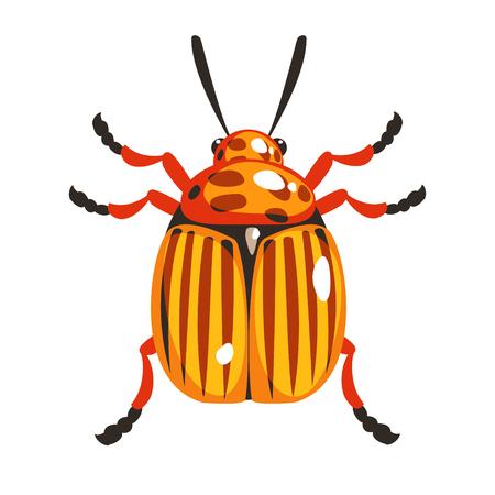 Escarabajo de patata de Colorado colorido personaje de dibujos animados