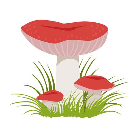 Russula xerampelina, edible forest mushrooms. Colorful cartoon illustration