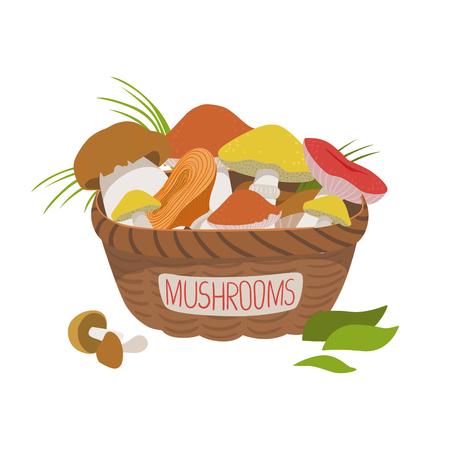 Busket full of wild mushrooms. Colorful cartoon illustration Çizim