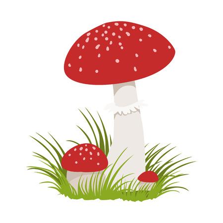 Amanita muscaria, poisonous mushrooms. Colorful cartoon illustration Illustration