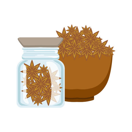 Stars of anise in a brown bowl and glass jar, colorful cartoon illustration Ilustrace
