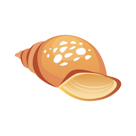 Brown sea spiral seashell, an empty shell of a sea mollusk. Colorful cartoon illustration Illustration