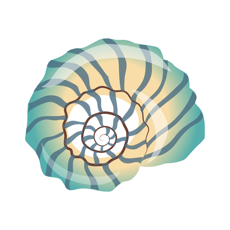 Beautiful blue seashell, an empty shell of a sea mollusk. Colorful cartoon illustration Ilustração